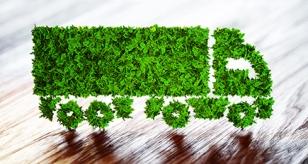 Sustainability & Accessibiilty